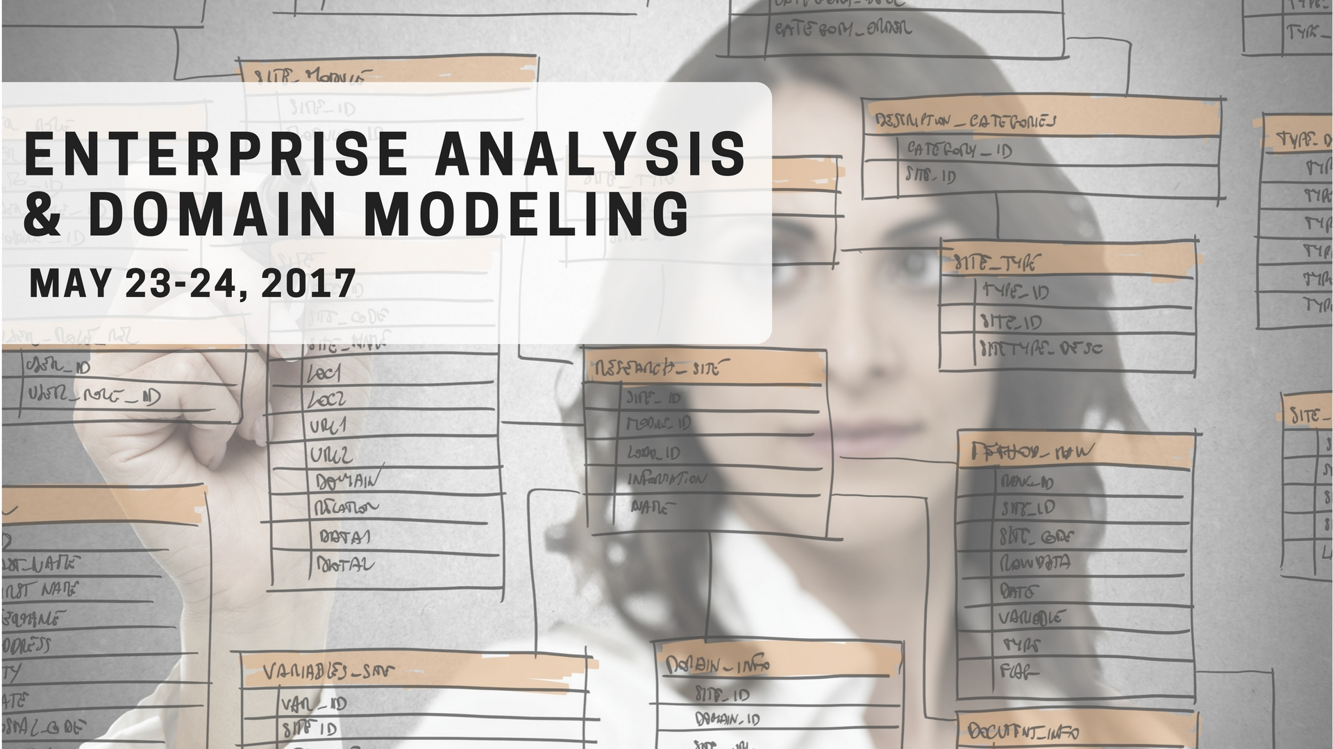 ENTERPRISE ANALYSIS AND DOMAIN MODELINGS