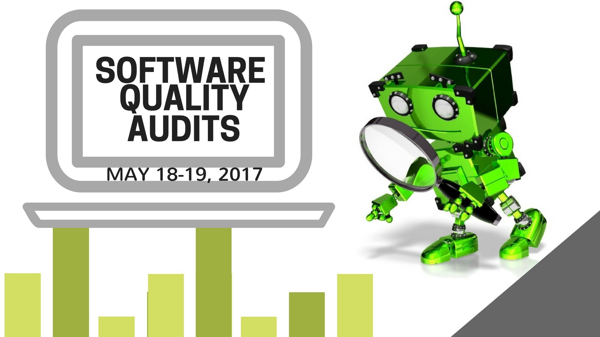 Software Quality Audits